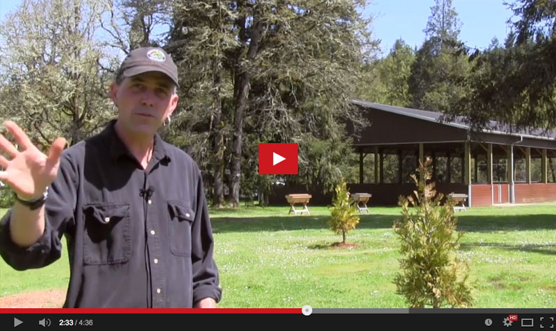 Video: Salmon Stories with Shawn Donnille of Mountain Rose Herbs