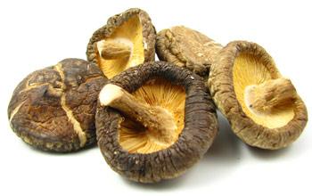 shiitake_mushroom