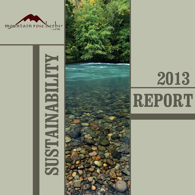 2013 Sustainability Report