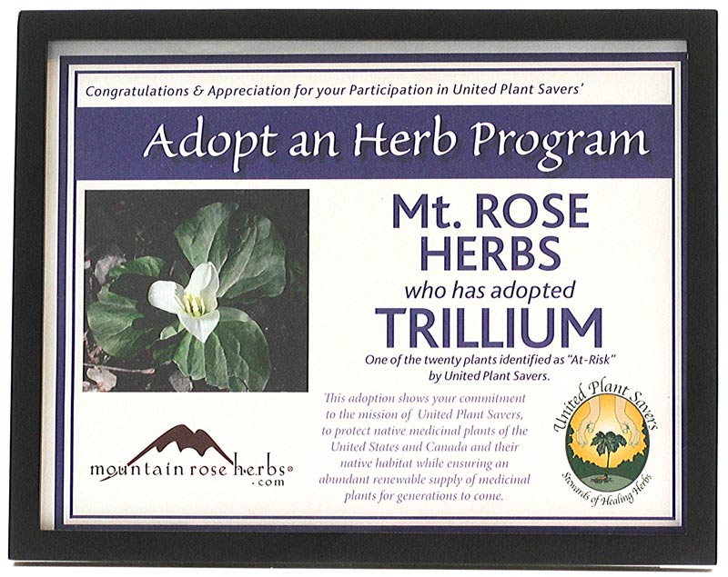 Mountain Rose Herbs adopted the trillium flower.