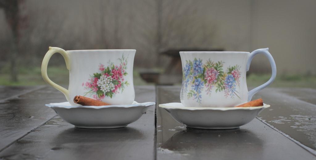 vintage tea cups long v