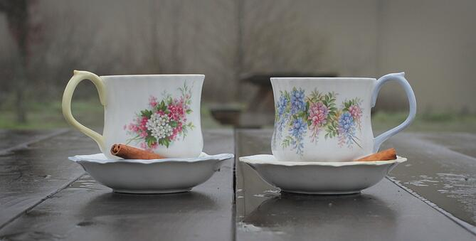 vintage tea cups long v