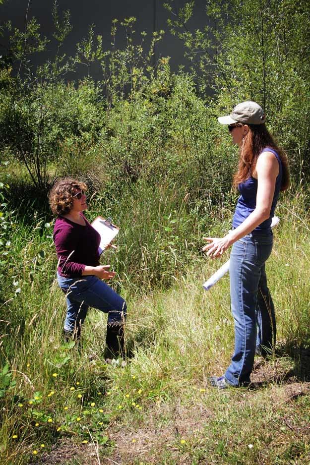 Mountain Rose Herbs - Sustainability