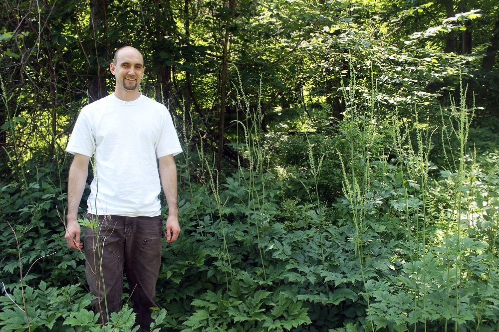 farms liaison and procurement officer standing in forest of black cohosh