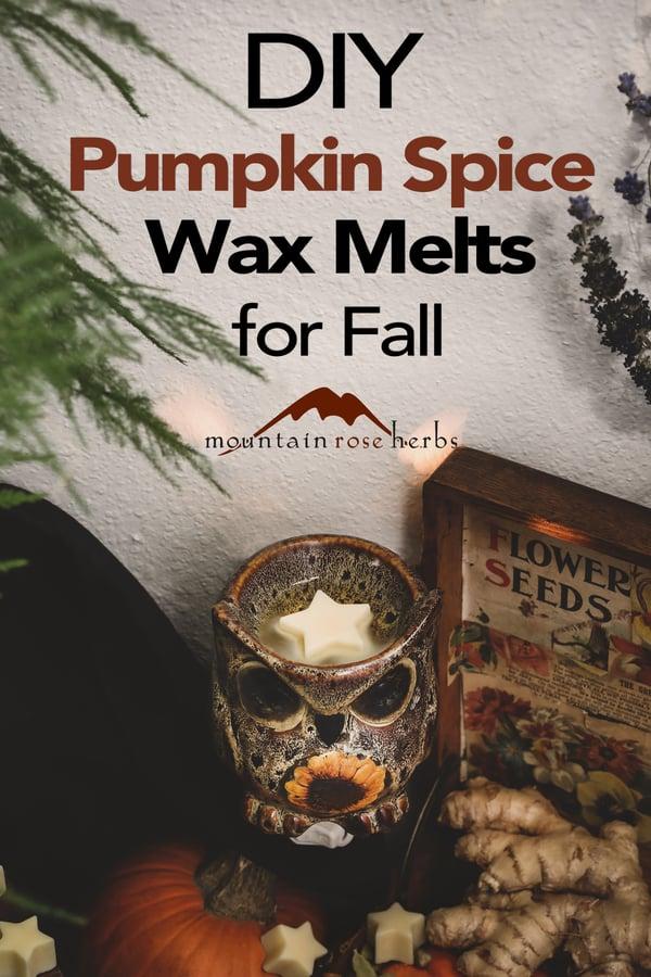 Pinterest image for DIY Pumpkin Spice Wax Melts