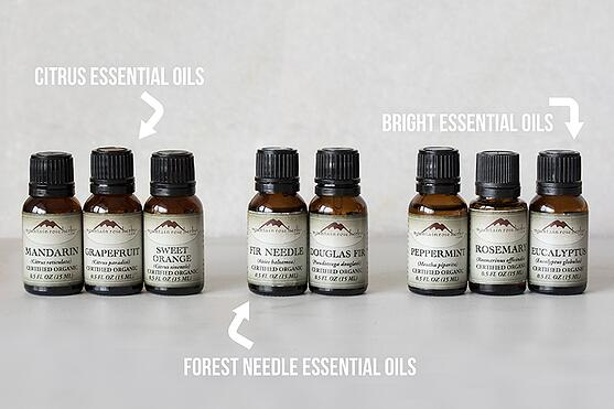 Adding Essential Oils to Your Morning Routine