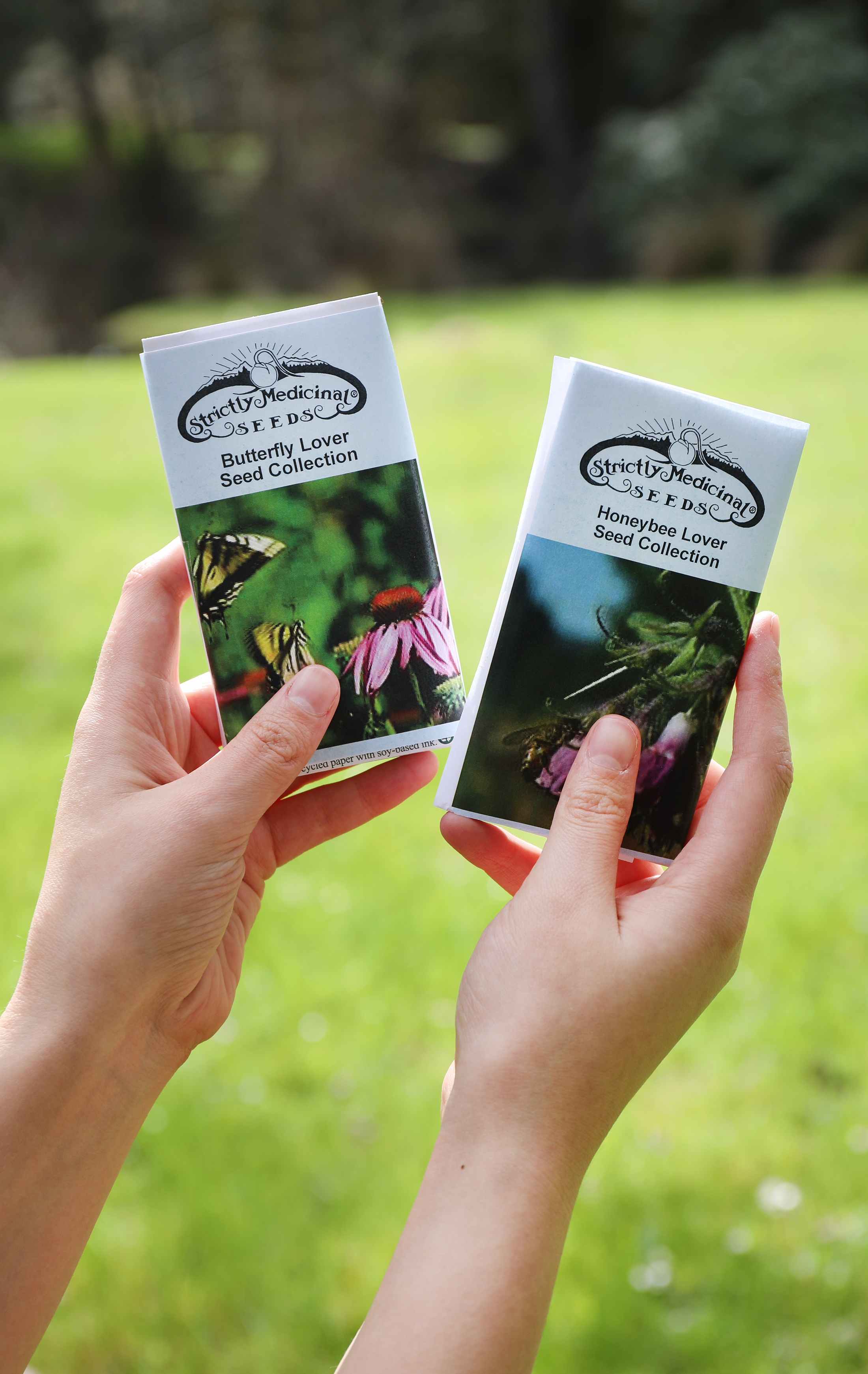 Hands holding seed packets in front of grassy field