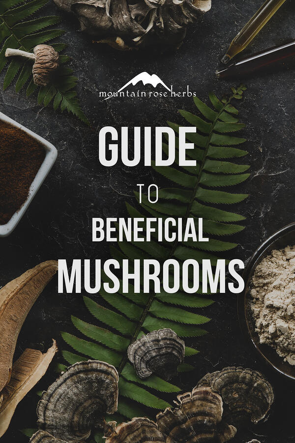 Guide to Beneficial Mushrooms