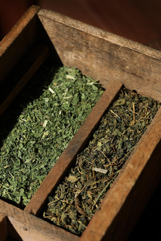 Dried organic North American nettle leaf and European nettle leaf side by side in antique wooden tray.
