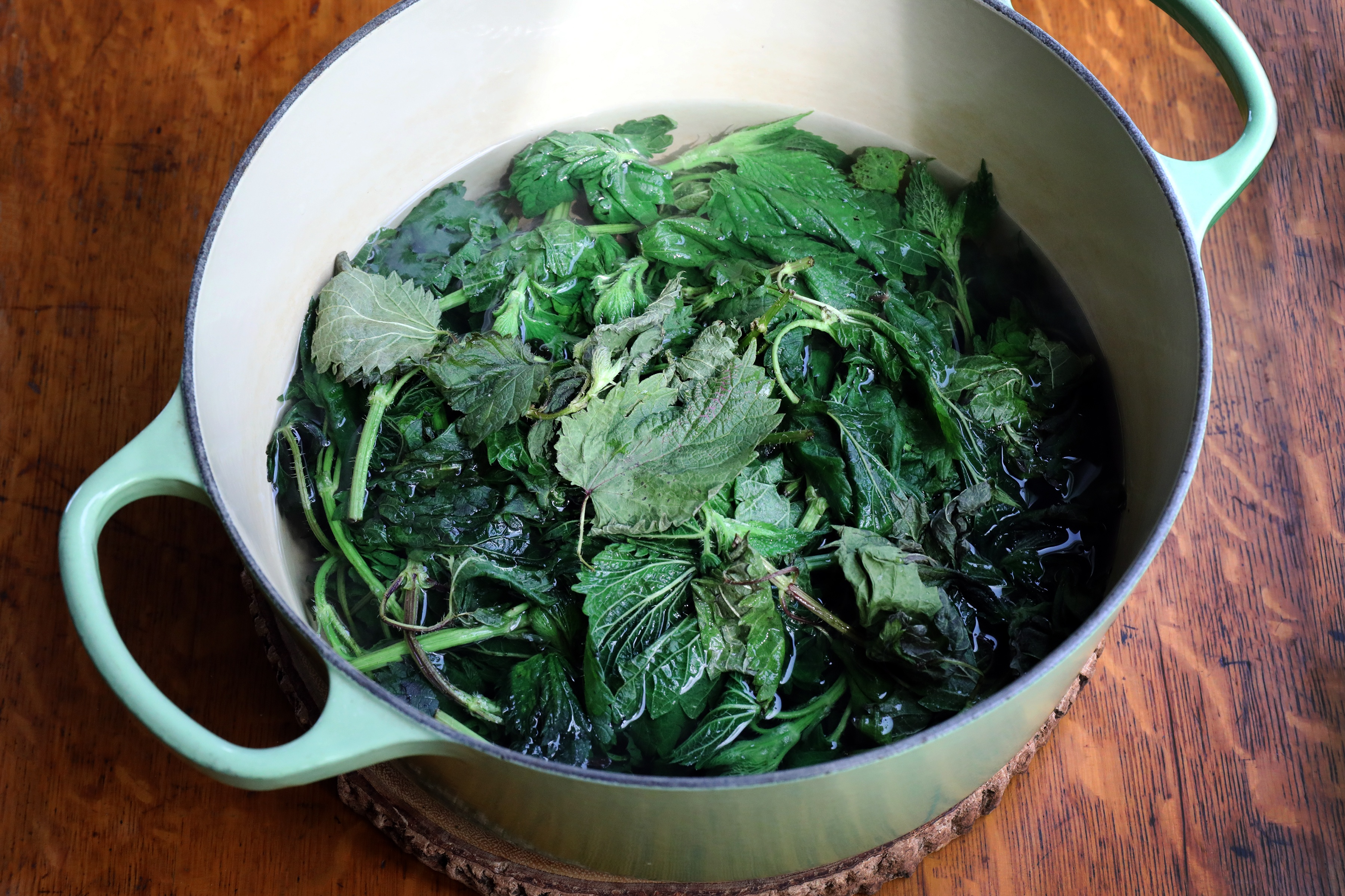 Pot soaking nettle leaf in hot water to blanch them