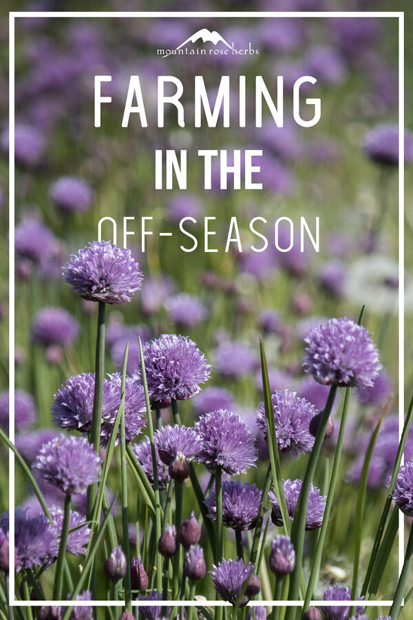 Farming in the Off-Season