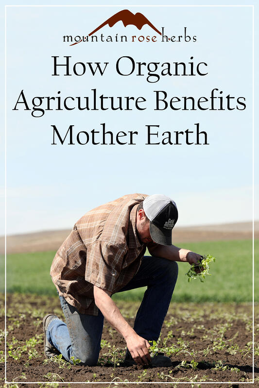 Pin to How Organic Agriculture Benefits Mother Earth