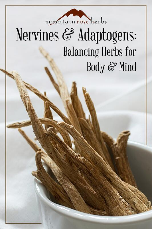 Nervines and Adaptogens: Balancing Herbs for Body and Mind Pin