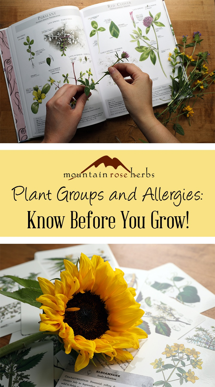 Making Educated Plant Choices: Plant Families and Allergens Pin