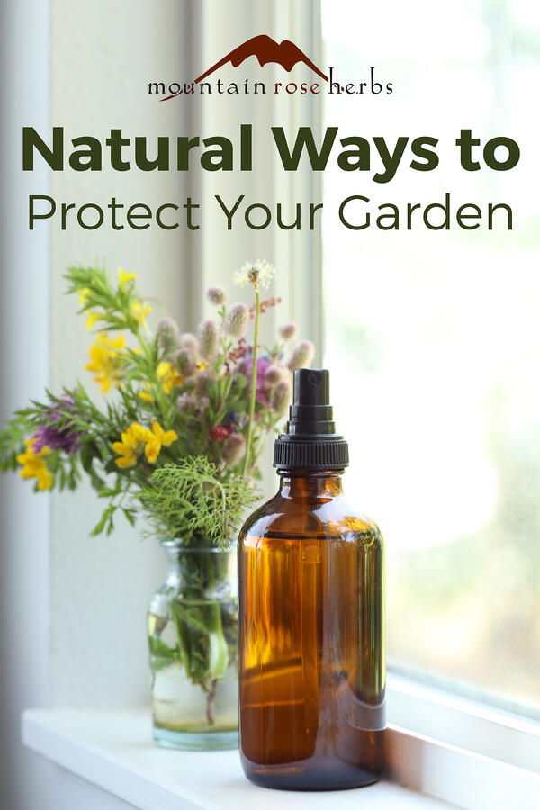Natural Ways to Protect Your Garden Pinterest pin from Mountain Rose Herbs