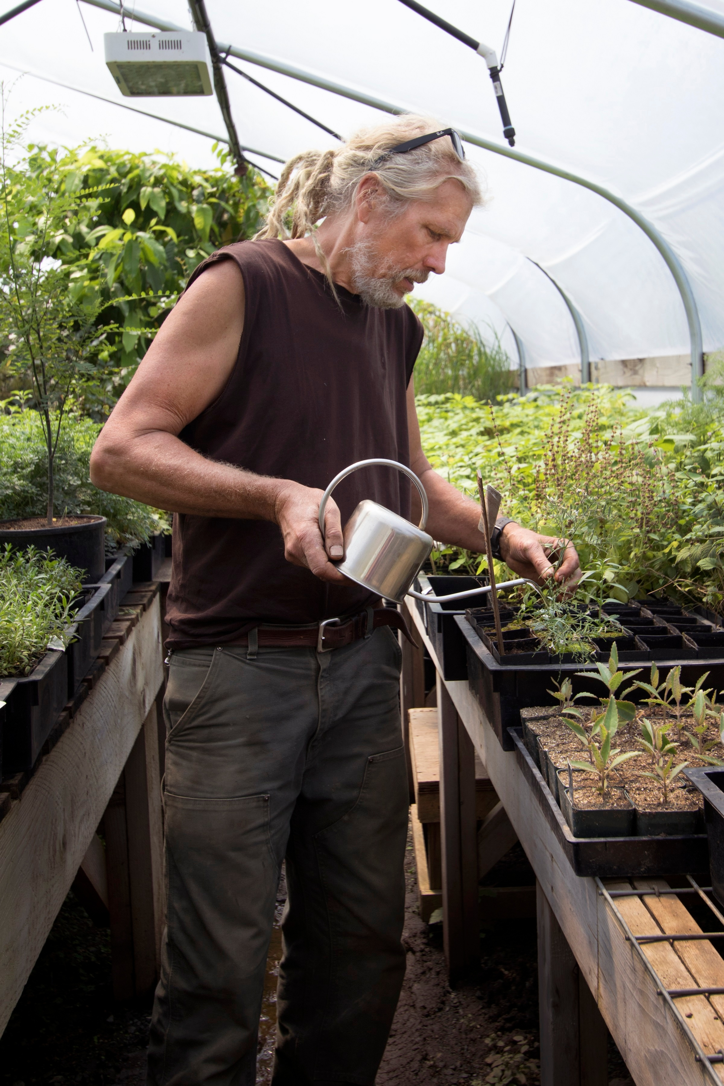 Richo Cech watering seedling plants in his greenhouse in Southern Oregon