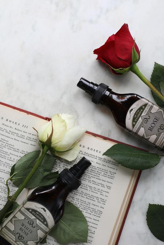 Glass bottles of white rose and rose hydrosols laying out near fresh roses and a book
