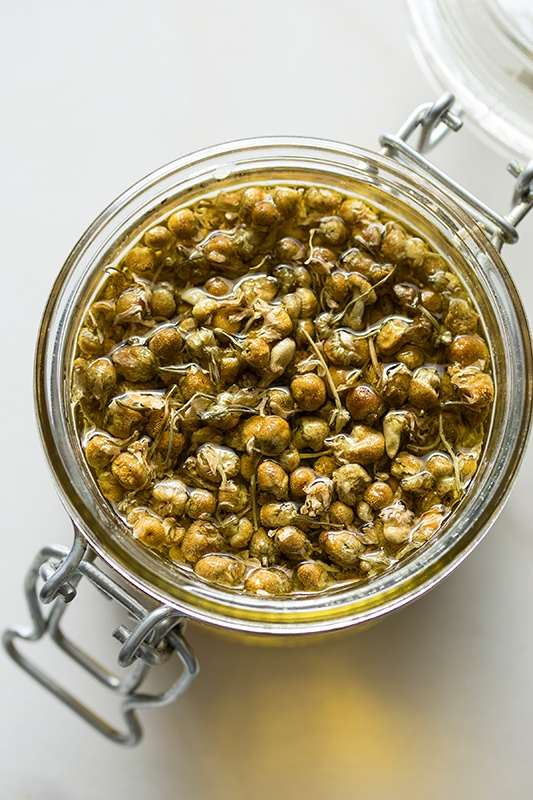 Chamomile infusing into oil