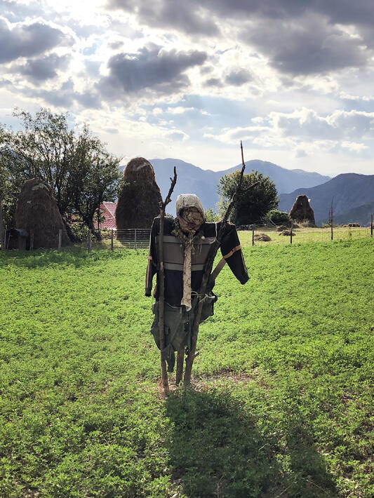 Scarecrow in green field in Albania with haystacks behind.