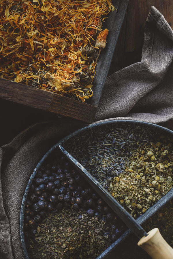 A variety of herbs laid out to make into bath salts for a sitz bath