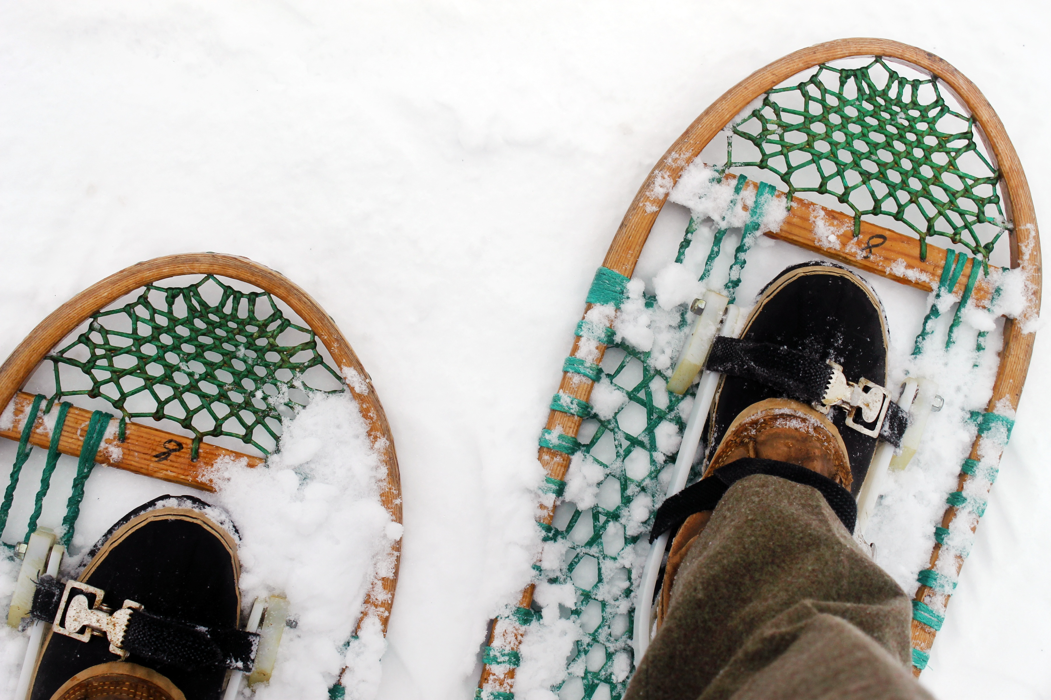 Green and brown snow shoes in snow
