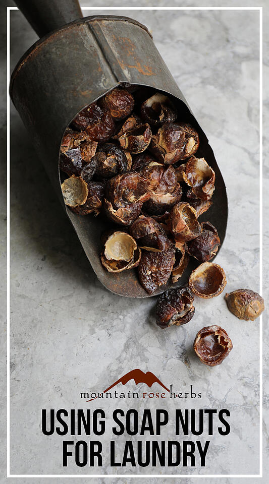 Pin to Using Soap Nuts for Laundry