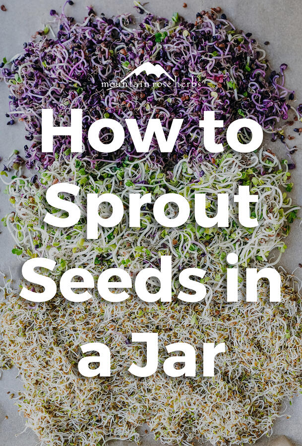 Sprouting Seeds: Easy DIY Pinterest Pin for Mountain Rose Herbs