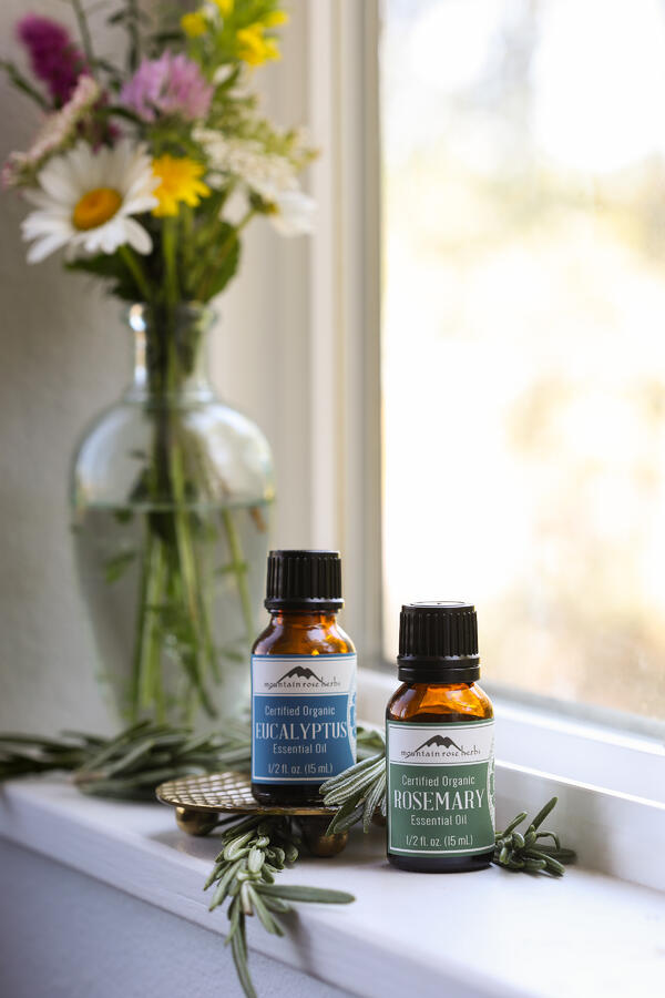 Bottles of eucalyptus and rosemary essential oils on a windowsill with fresh rosemary.