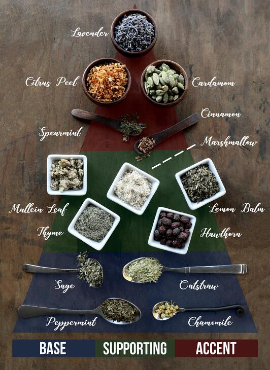 3 Step Tea Blending Guide Infographic