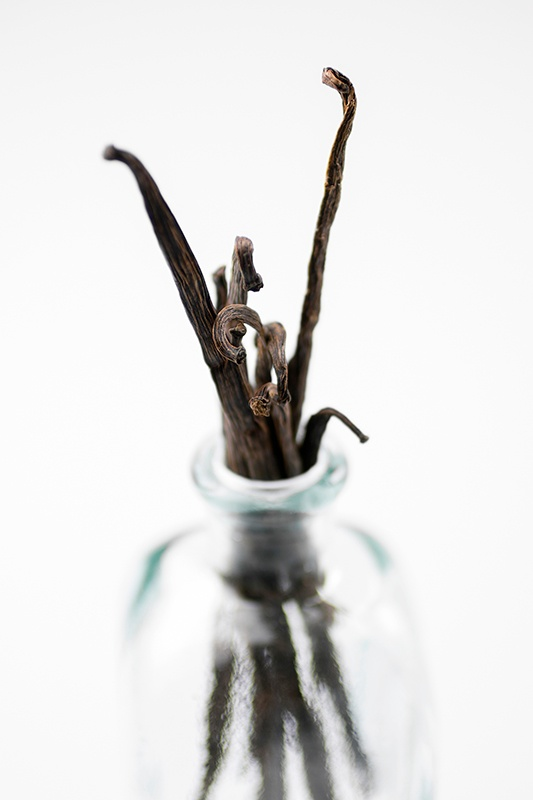 bundle of vanilla beans standing upright in glass vase