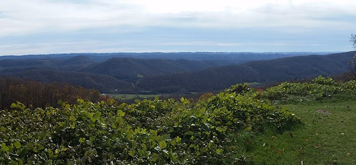 View of a southwest Appalachian landscape with rolling forested hills and valleys.