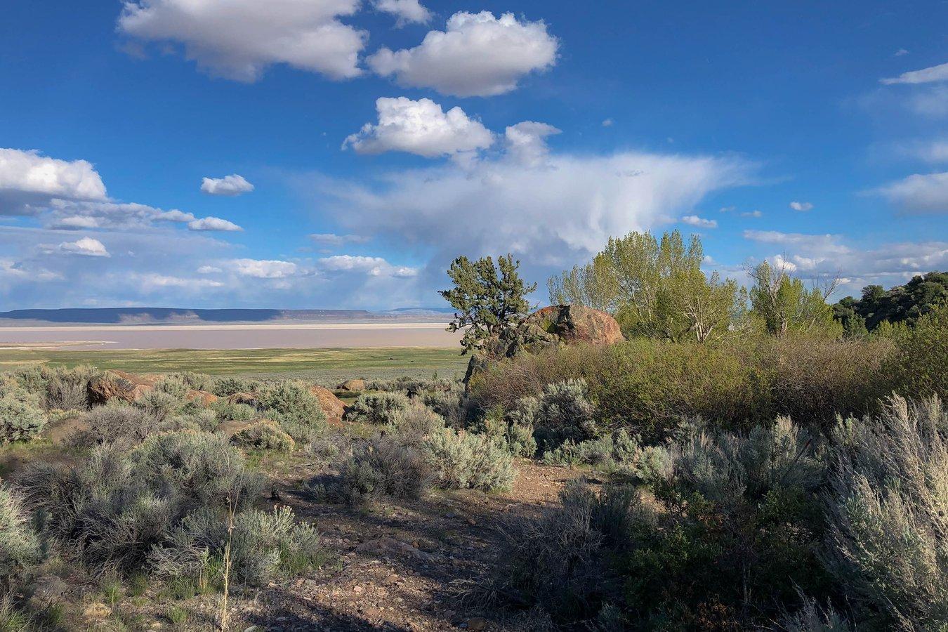 Alvord desert landscape