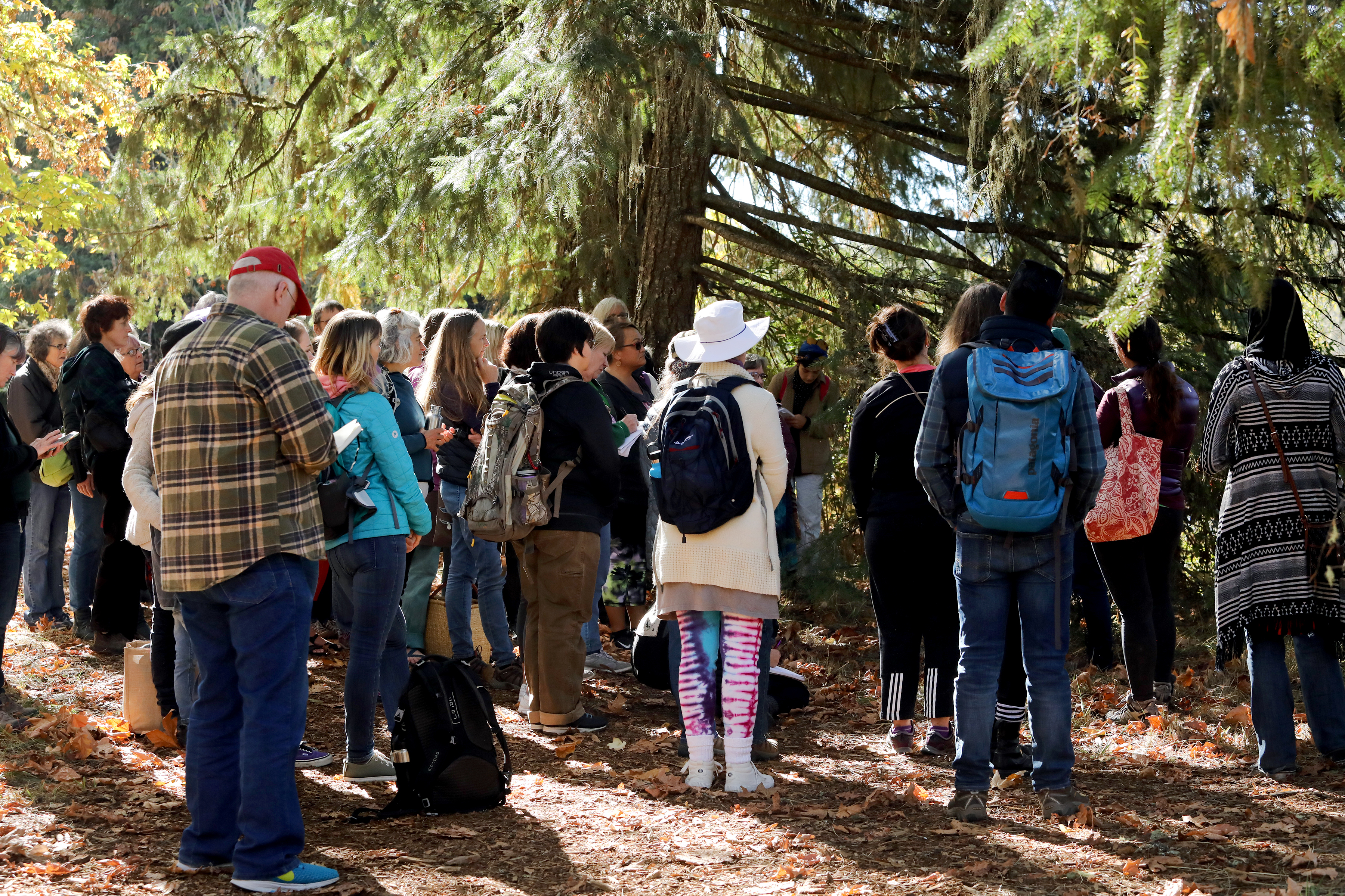 Group of people on guided interpretive nature walk in autumn setting.