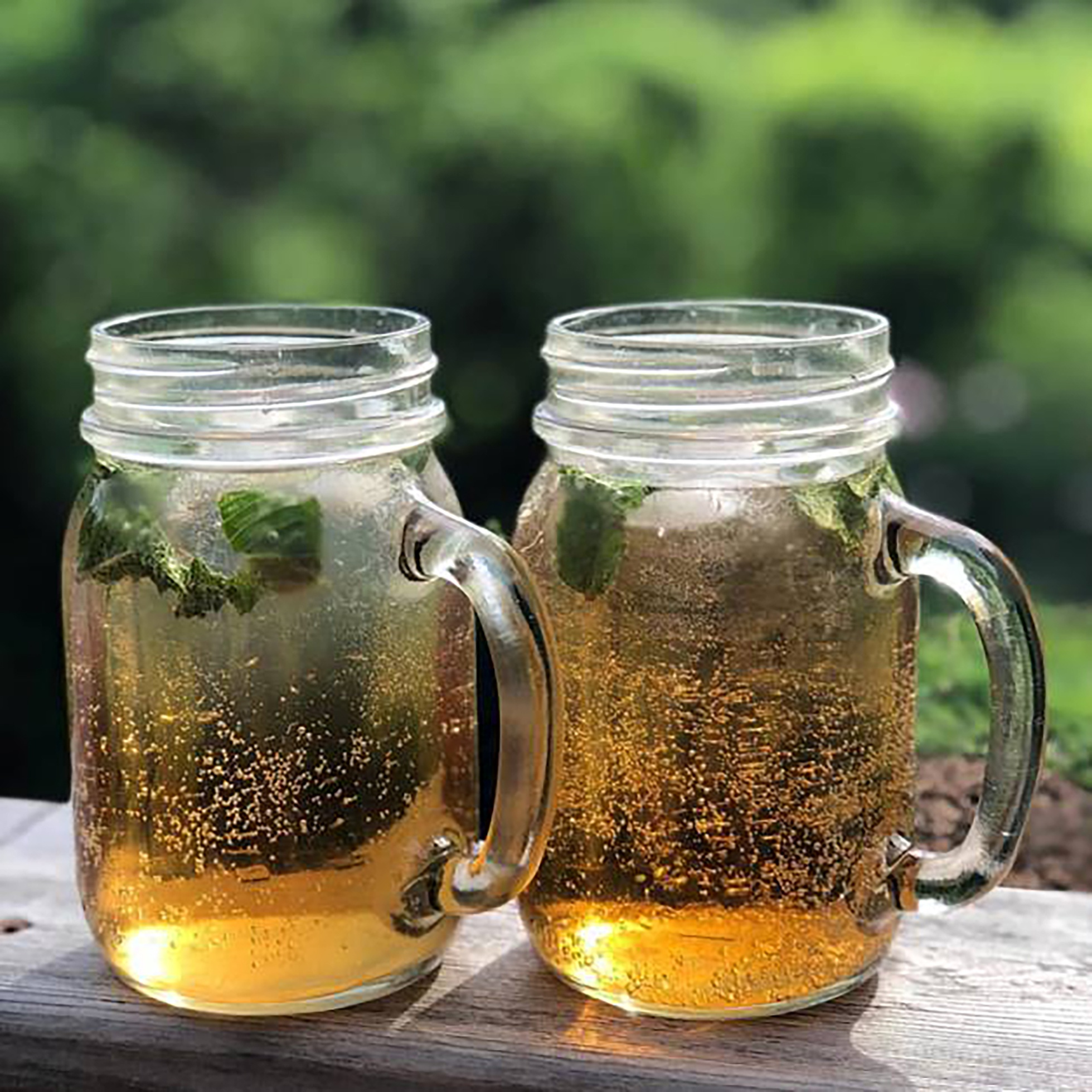 Two handles mason jars will with fizzy botanical beverages