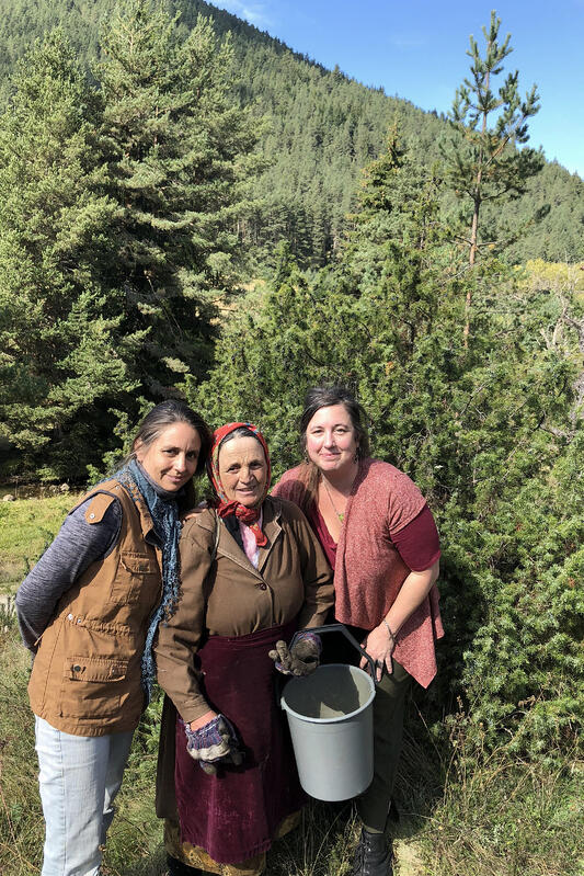 Three women in a mountain forest setting holding a harvesting bucket.