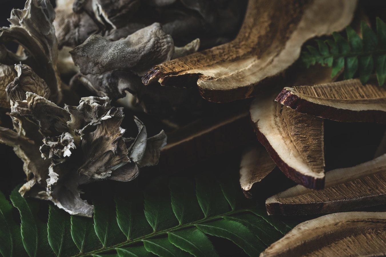 A variety of organic dried mushrooms
