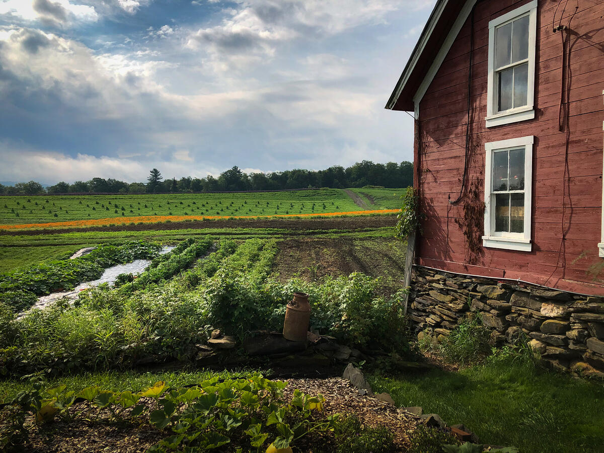 A view over the open fields of Foster Farm in Vermont.