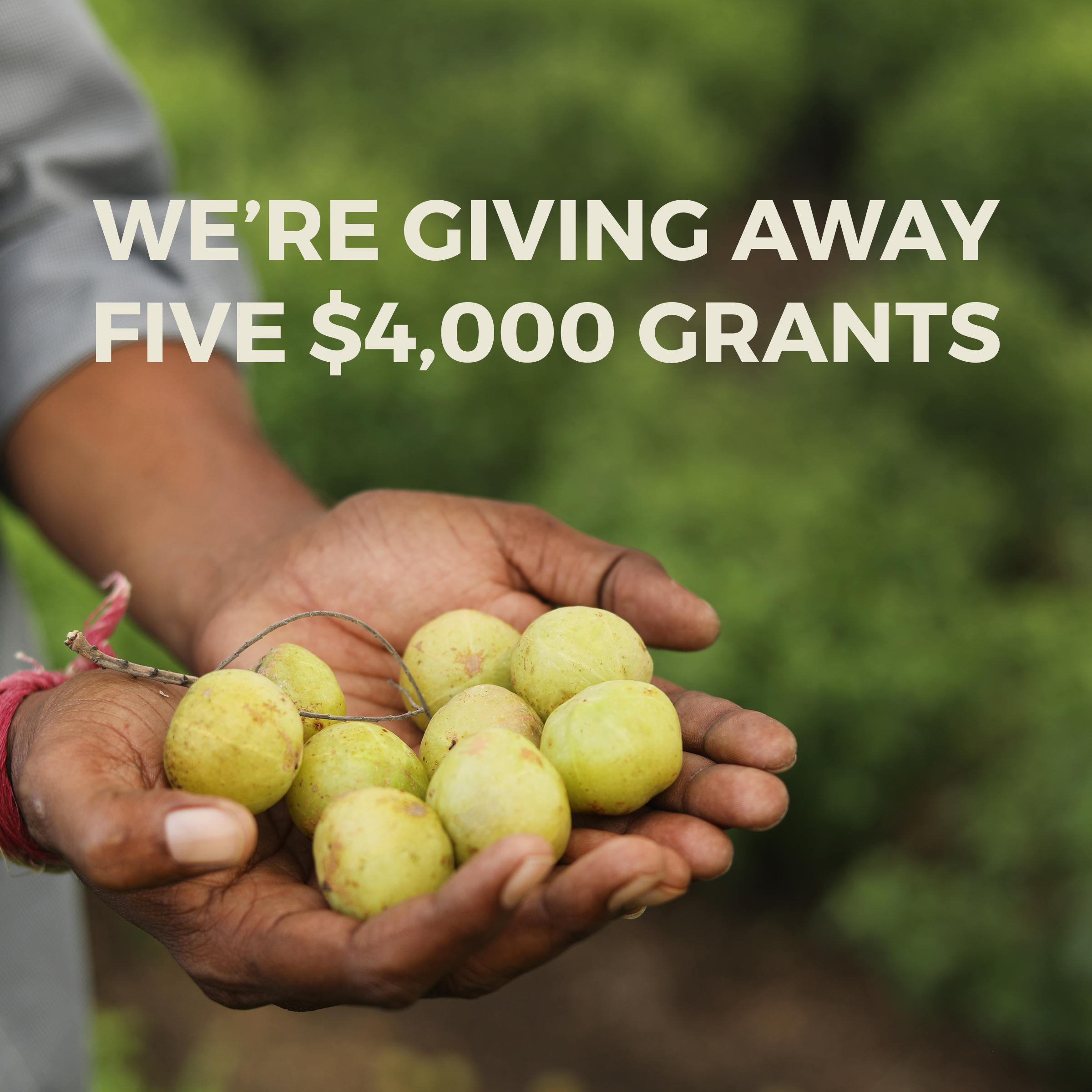 We're Giving Away Five $4,000 Grants!