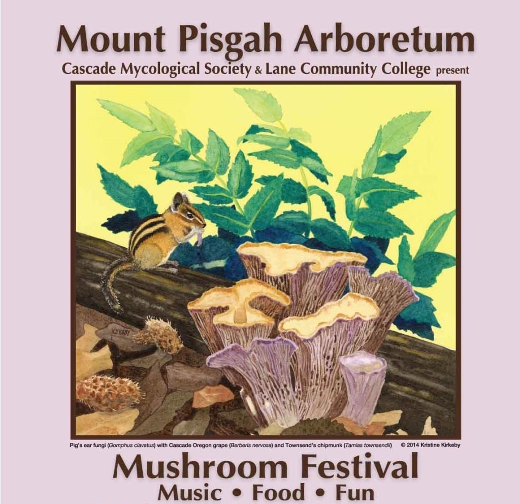 35mushroomfest